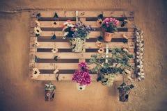 Vaso da fiori sulla parete Fotografia Stock
