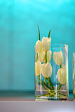 Vaso de flor fotografia de stock royalty free