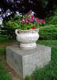 vaso de flor Foto de Stock