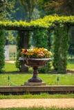 Vaso de flor do jardim Fotos de Stock