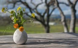Vaso de flor na tabela de piquenique em Sonoma Imagem de Stock