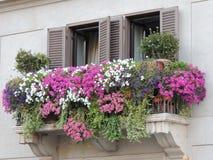 Vaso de flores colorido da janela fotos de stock
