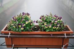 Vaso de flores concreto contra na ponte no tempo nevoento foto de stock royalty free