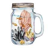 Vaso de Isoleted con Marine Life Landscape - el océano y el mundo subacuático con diversos habitantes Acuario Imagen de archivo