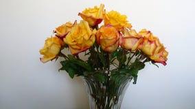 Vaso de rosas amarelas e vermelhas variegated foto de stock royalty free