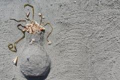 Vaso de Sandy na praia da chave da areia, Florida, EUA Fotos de Stock