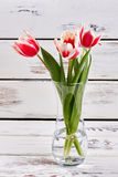 Vaso de vidro com flores da mola Imagens de Stock