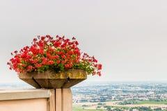 vaso dei gerani e campagna di Romagna in Italia Fotografia Stock