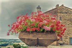 vaso dei gerani e campagna di Romagna in Italia Fotografia Stock Libera da Diritti
