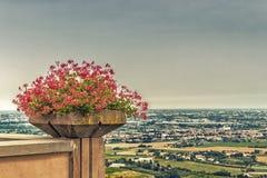vaso dei gerani e campagna di Romagna in Italia Immagine Stock Libera da Diritti