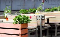Vaso dei gerani su una tavola in un caffè, all'aperto Immagine Stock