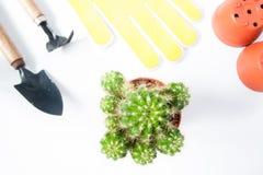 Vaso del cactus e degli strumenti di giardino isolati su fondo bianco Fotografia Stock