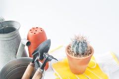 Vaso del cactus e degli strumenti di giardino isolati su fondo bianco, poliziotto Fotografia Stock