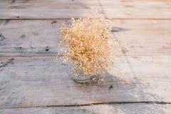 Vaso del fiore asciutto Fotografia Stock
