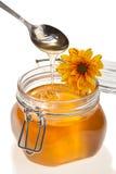 Vaso del miele, con il fiore su esso, isolato Immagine Stock