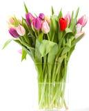 Vaso del tulipano Fotografie Stock