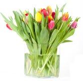 Vaso del tulipano Fotografie Stock Libere da Diritti
