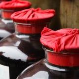 Vaso del vino Fotografia Stock
