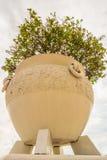 Vaso dell'albero sul fondo della nuvola di pioggia Fotografia Stock