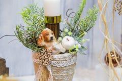 Vaso della decorazione di Natale con un albero di Natale, candela e un cane - simboli del nuovo anno fotografia stock