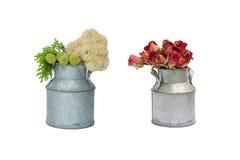 Vaso della latta con il fiore fresco ed asciutto Immagine Stock Libera da Diritti