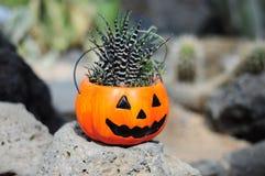 Vaso della pianta di Halloween Immagini Stock Libere da Diritti