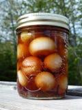 Vaso delle cipolle all'esterno Fotografia Stock
