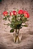 Vaso delle rose immagini stock