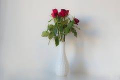 Vaso delle rose rosse Fotografia Stock Libera da Diritti