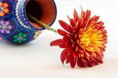 Vaso derrubado com um Mum alaranjado Fotografia de Stock