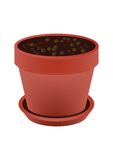 Vaso di Brown isolato su fondo bianco Vettore Fotografie Stock Libere da Diritti