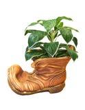 Vaso di ceramica Fotografia Stock