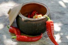 Vaso di cottura tradizionale Immagini Stock Libere da Diritti