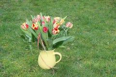 Vaso di fiore con i tulipani, su verde Immagini Stock Libere da Diritti