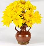 Vaso di fiore del crisantemo Fotografie Stock Libere da Diritti