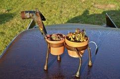 Vaso di fiore del metallo del cammello battriano Fotografie Stock Libere da Diritti