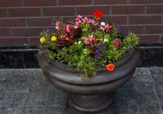 Vaso di fiore della via Fotografie Stock Libere da Diritti