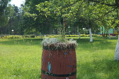Vaso di fiore sotto forma di vecchi barilotti di legno Fotografia Stock