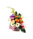 Vaso di fiore su fondo bianco Immagini Stock