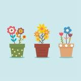 Vaso di fiore sveglio tre Fotografie Stock