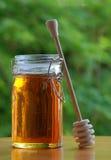 Vaso di miele con il bastone di stir Fotografie Stock Libere da Diritti