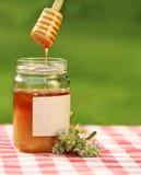 Vaso di miele contro la priorità bassa della natura Fotografie Stock Libere da Diritti