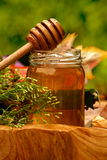Vaso di miele fresco Fotografie Stock
