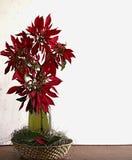 Vaso di Natale con la bottiglia di vino immagini stock