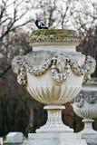 Vaso di pietra, palazzo di Schonbrunn, Vienna Fotografia Stock