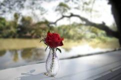 Vaso di Rosa vicino al fiume Immagine Stock Libera da Diritti