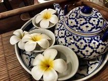 Vaso di tè Immagine Stock
