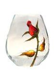 Vaso di vetro Fotografie Stock