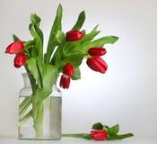 Vaso di vetro con i tulipani rossi Fotografia Stock
