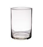 Vaso di vetro isolato su un fondo bianco Fotografia Stock Libera da Diritti